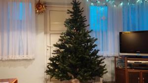 Jõulupuu ehtimine 2016